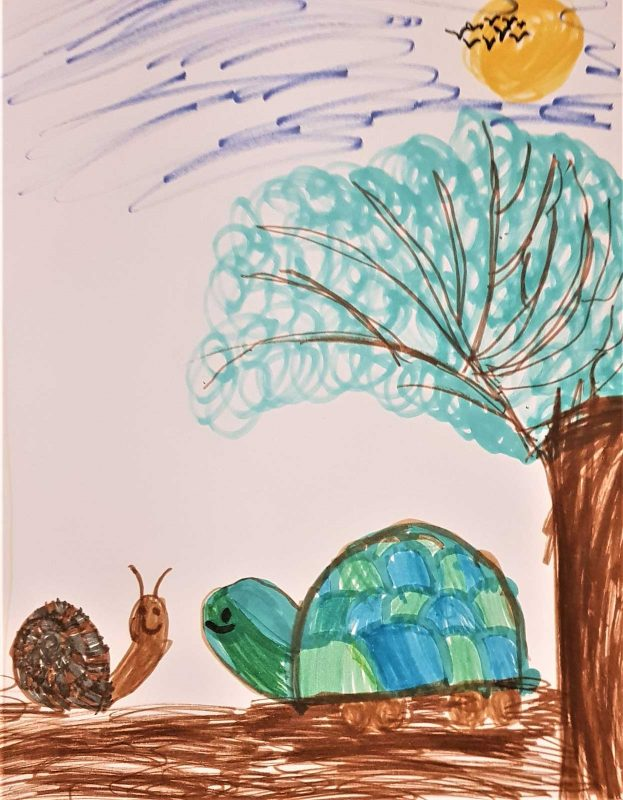 Черепаха и улитка, Ума, 7 лет